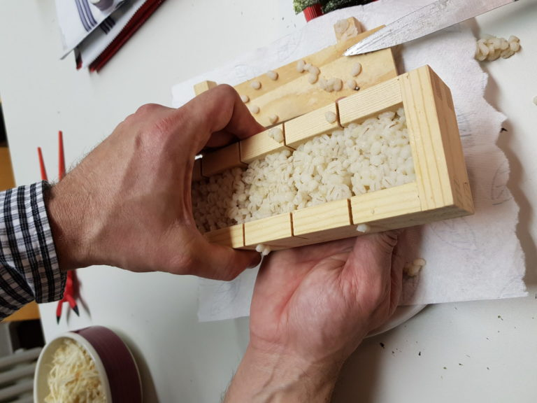 Graupesushi Cooking Workshop